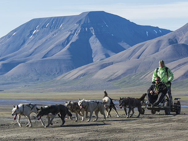 Dog sledding during summer - Jarle Røssland