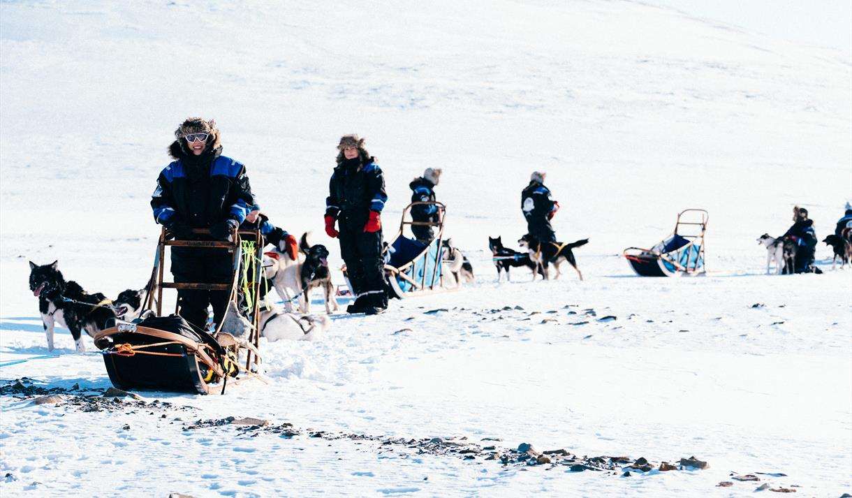 Group with dog sleds