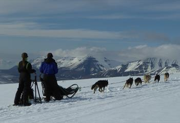 Explore the Arctic with your own dog team – full day - Arctic Husky Travellers