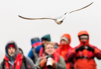 Lens & Perspectice - the slightly different sightseeing tour with focus on photos - Spitzbergen Adventures