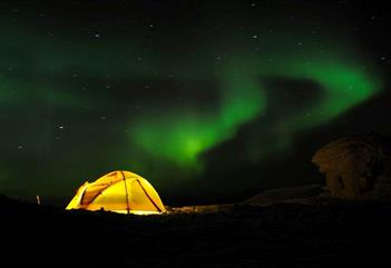 Mushing under the northern lights - Basecamp Spitsbergen