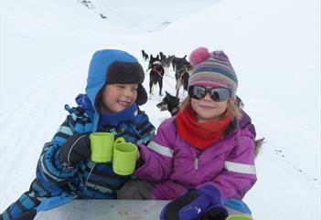 Arctic Adventure for the whole family - dog sledding half or full day trips - Arctic Husky Travellers