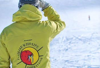 Ski Touring Camp in Svalbard - Svalbard Wildlife Expeditions
