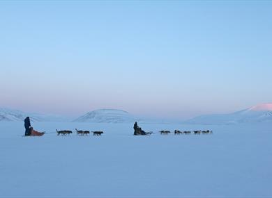 Sled teams out on a tour