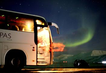 Hunting the Northern Lights- a comfortable bus ride into the polar-night - Arctic Tapas
