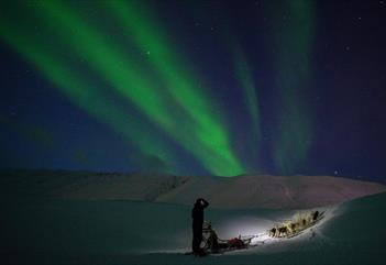 Dog sledding beneath underneath the Northern Lights