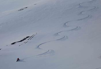 Ski Touring Expedition in Svalbard - Svalbard Wildlife Expeditions